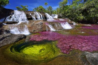 Cano Cristales – Кристальная река